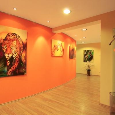 Ausstellungsflächen für lokale Künstler in den Zahnarztpraxis-Räumen